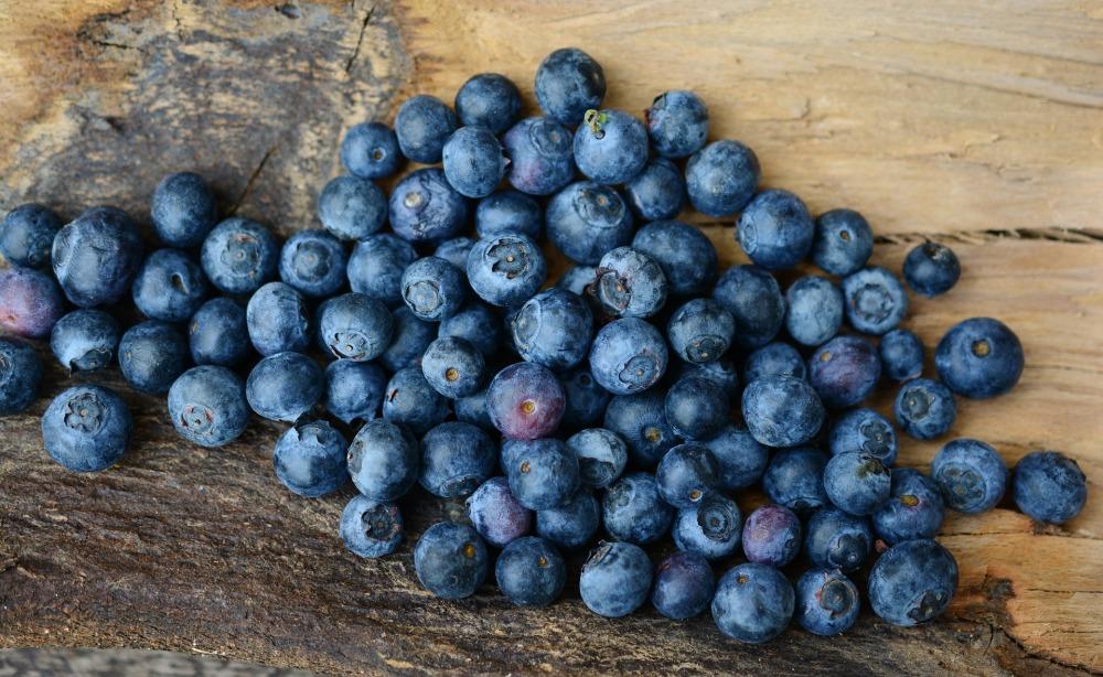 blueberries-2270379_1920